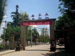 勐海茶厂(モウ海茶廠)
